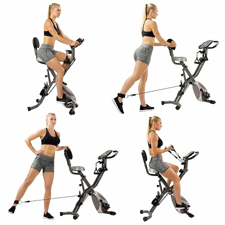 Sunny Health & Fitness SF-B2710